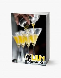 barman y coctelería profesional
