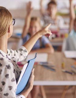 monitor de aula matinal